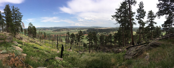 Southeast view panorama, Devil's tower