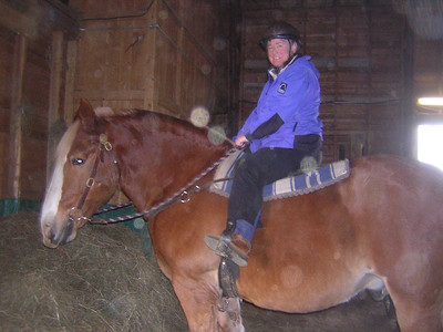 and she gets the giant Belgian horse, Mack  -17.1 hands. I took this one from the horse (pony) I was on