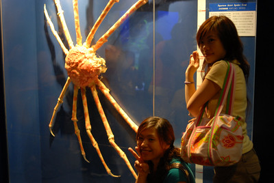 Visit to Underwater World, Sentosa, Singapore