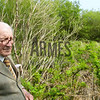 Brambles are a menace, a native to the region it grows prolifically choking any introduced flora hence Uncle George's pained expression as he had to spend many hard working hours each year cutting them back to maintain the gardens in the way he wanted them to be.