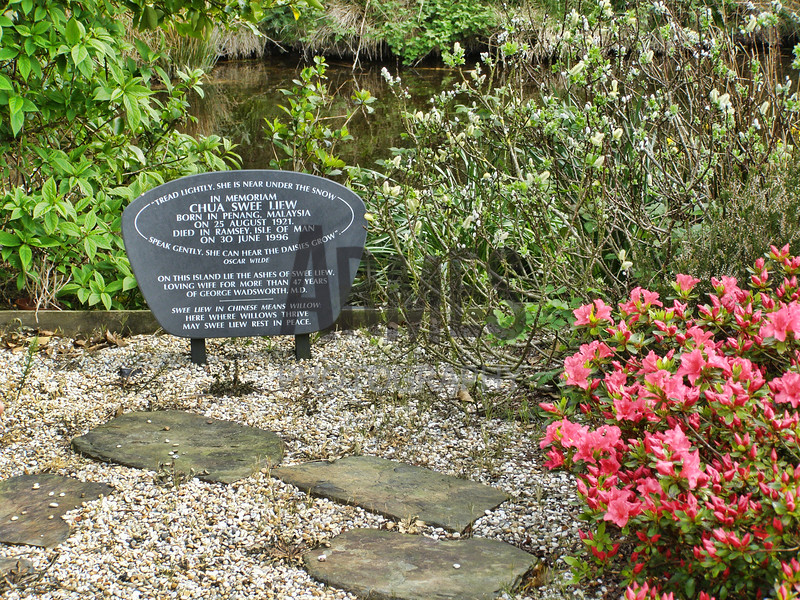 Close-up view of Auntie Swee Liew's memorial stone. The island is planted with willows of several varieties. Swee Liew means willow in Chinese.