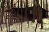 cabin scan 1