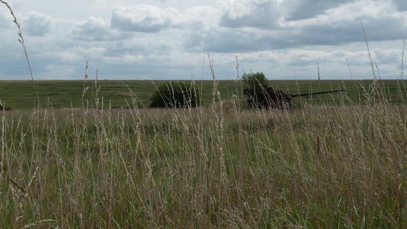 Imber Ranges, Salisbury Plain