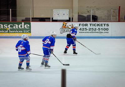T's hockey game, January 2016