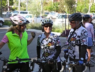 Wildflower ladies: Diana, Diane & Lori
