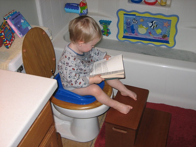 First steps toilet training