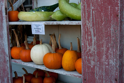Vermont_Oct_2010-4128