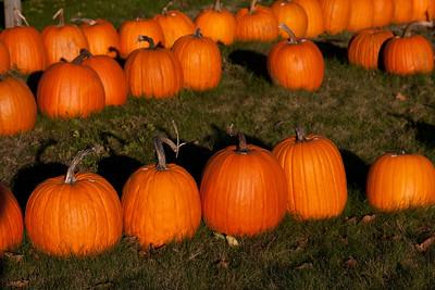 Vermont_Oct_2010-4129