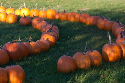 Vermont_Oct_2010-4132