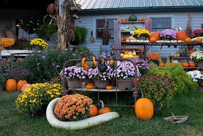 Vermont_Oct_2010-4120