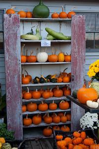 Vermont_Oct_2010-4121