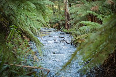 creek160613-140