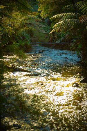 creek160613-146