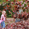 Playing in the leaves with daddy!