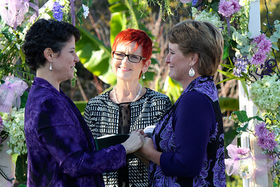 Amy & Nancy's wedding: Dec 31, 2013