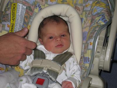 Lucia in her car seat
