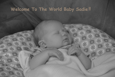 Welcome Baby Sadie!!