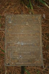 Tree plaque.