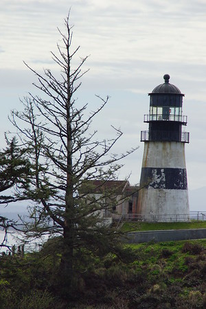 WhaleWatchingSpokenHere-31Mar2017-CapeDisappointment-Photos-LighthouseKids