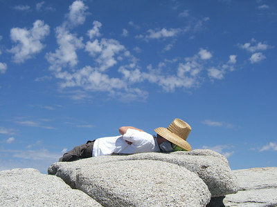 Napping at the top.
