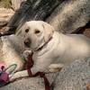 Yosemite 05-08 177Johnè