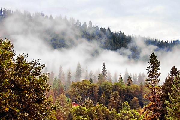 Foggy Mountain Cabin