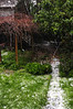Hail in Didi's backyard.