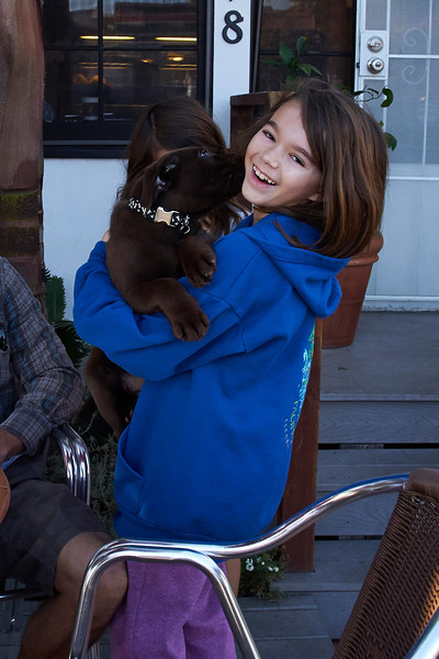 Katerina meets a Chocolate Lab puppy at the local coffee shop