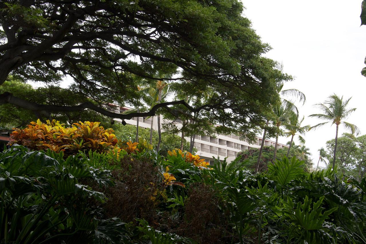 Glimpse of Hotel Mauna Kea