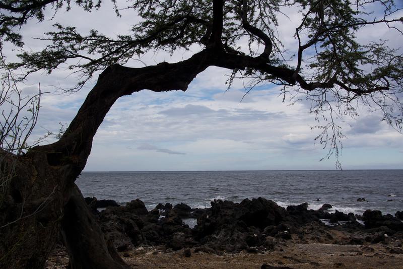 Looking east from Mauna Kea
