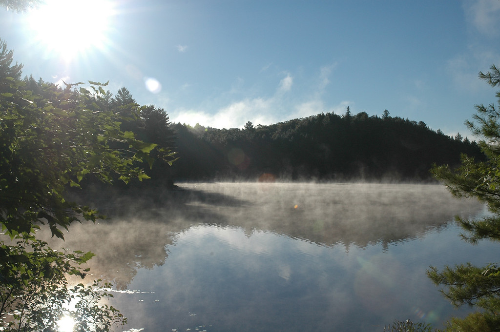 The morning mist.