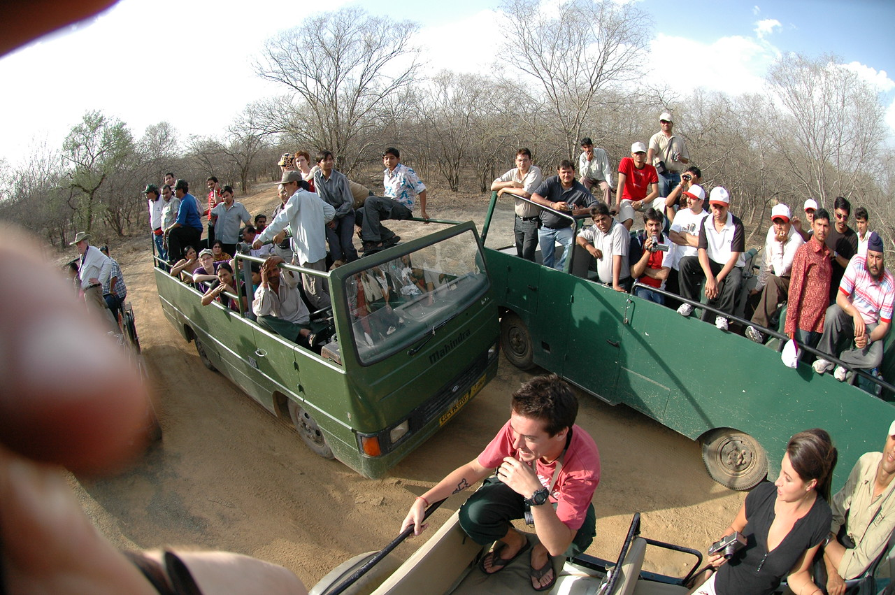 Ranthambore National Park: Crowd gathered to see the tigers.
