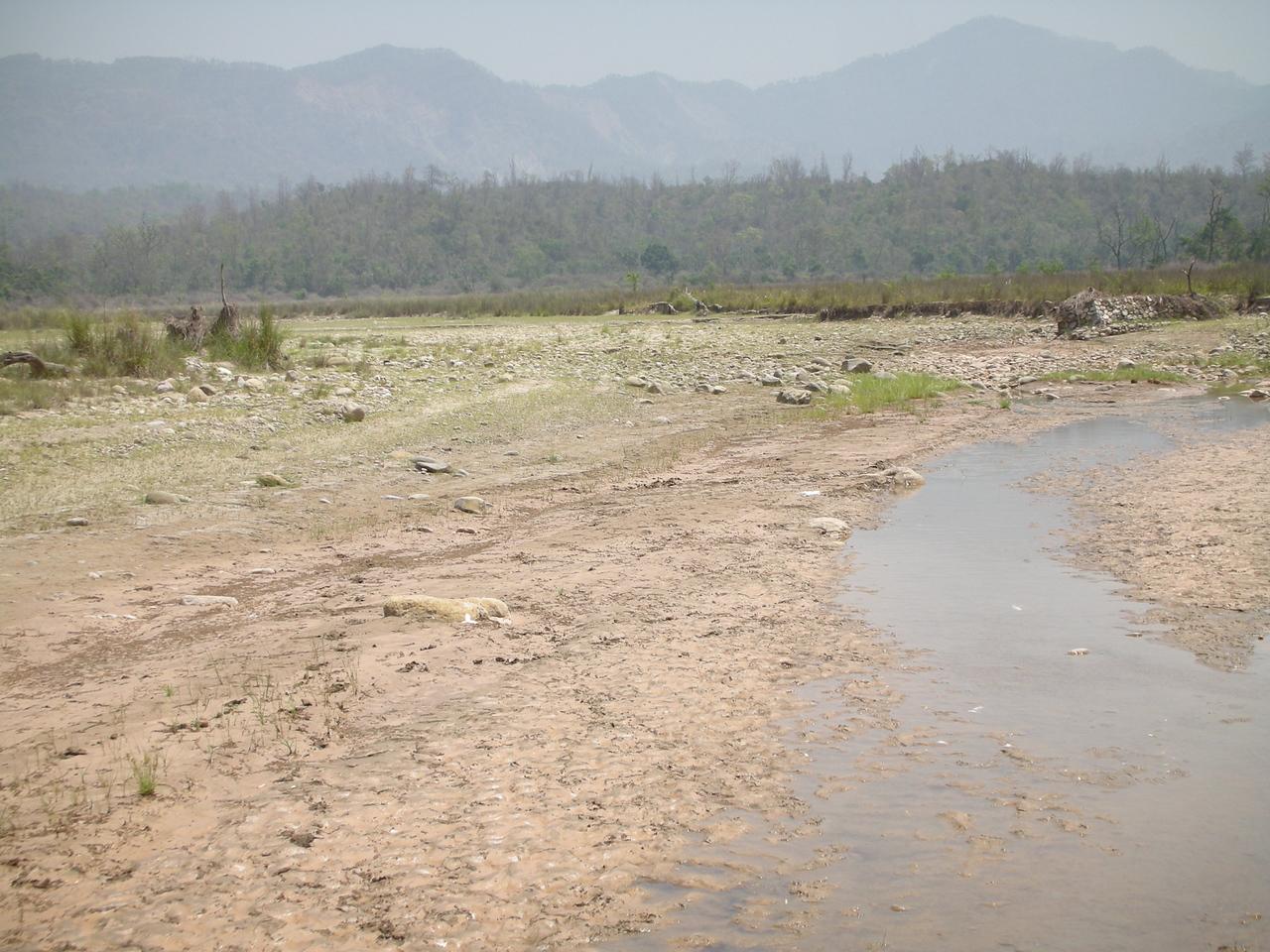 Rajaji National Park