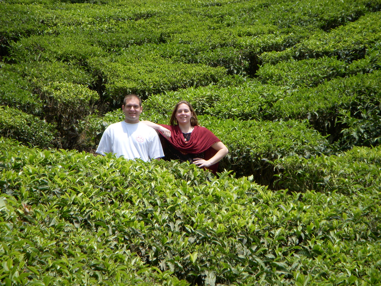 Jon and Cheryl on a tea plantation in Munnar