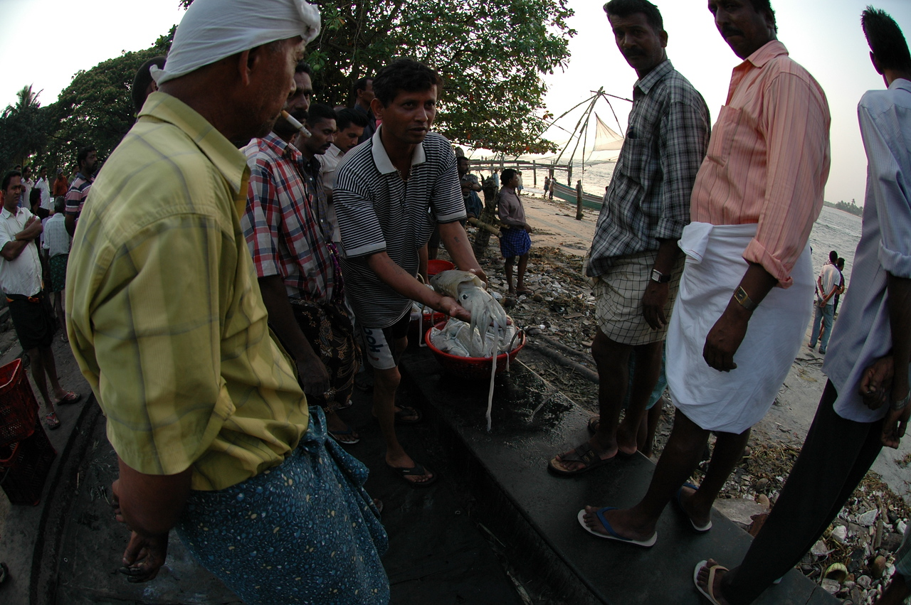 Fish from the boats are dumped on the sidewalk at the fish market and auctioned on the spot