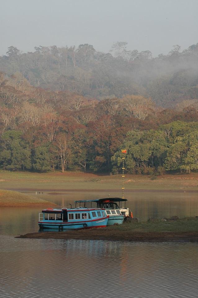 Tour boats docked along the lake at the Periyar Wildlife Preserve