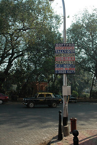 Street sign indicating programming language skills for jobs