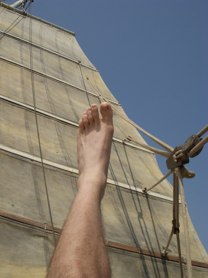 Day sailing in Cochin
