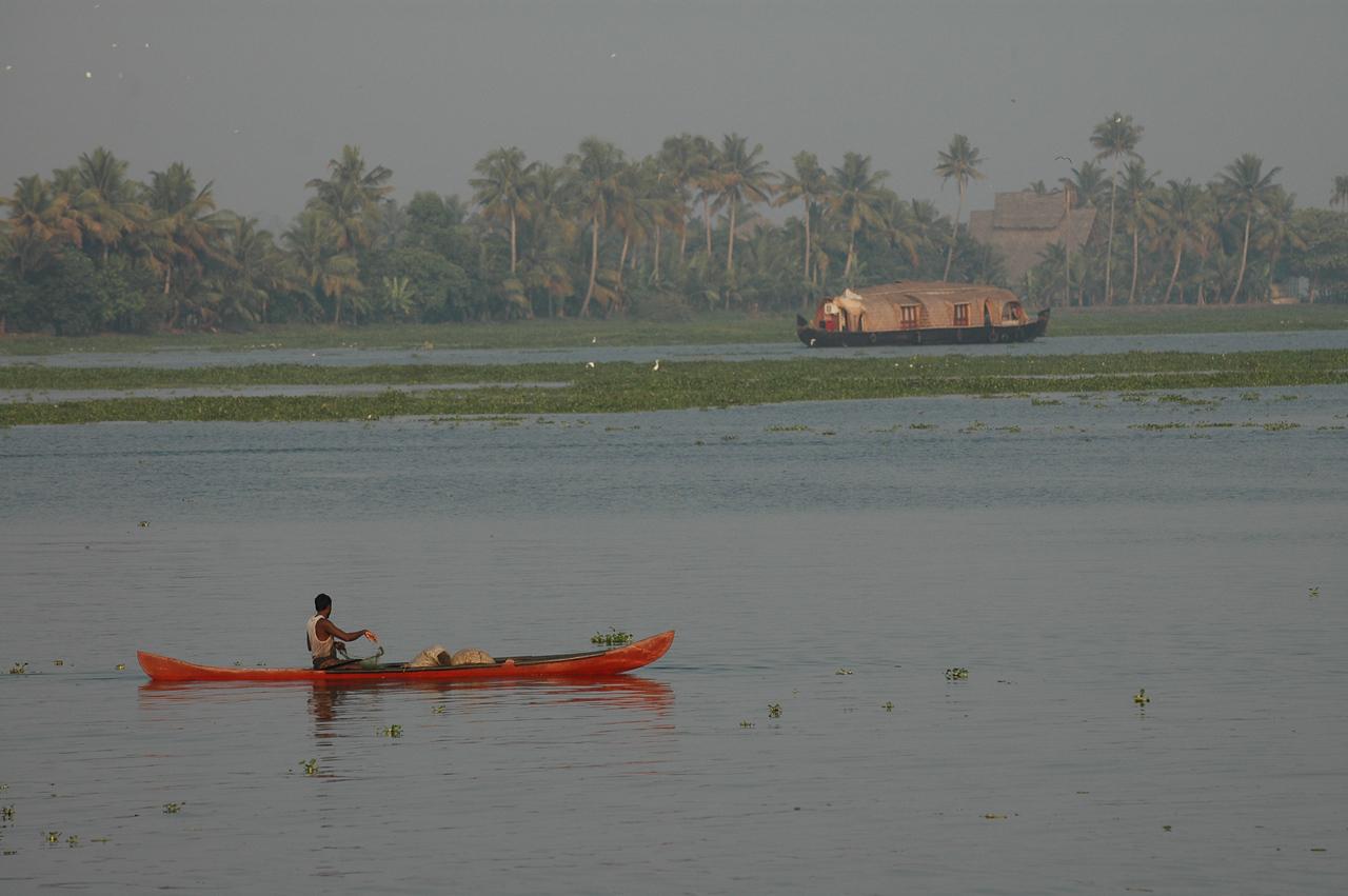 Fishing along the backwaters of Kerala