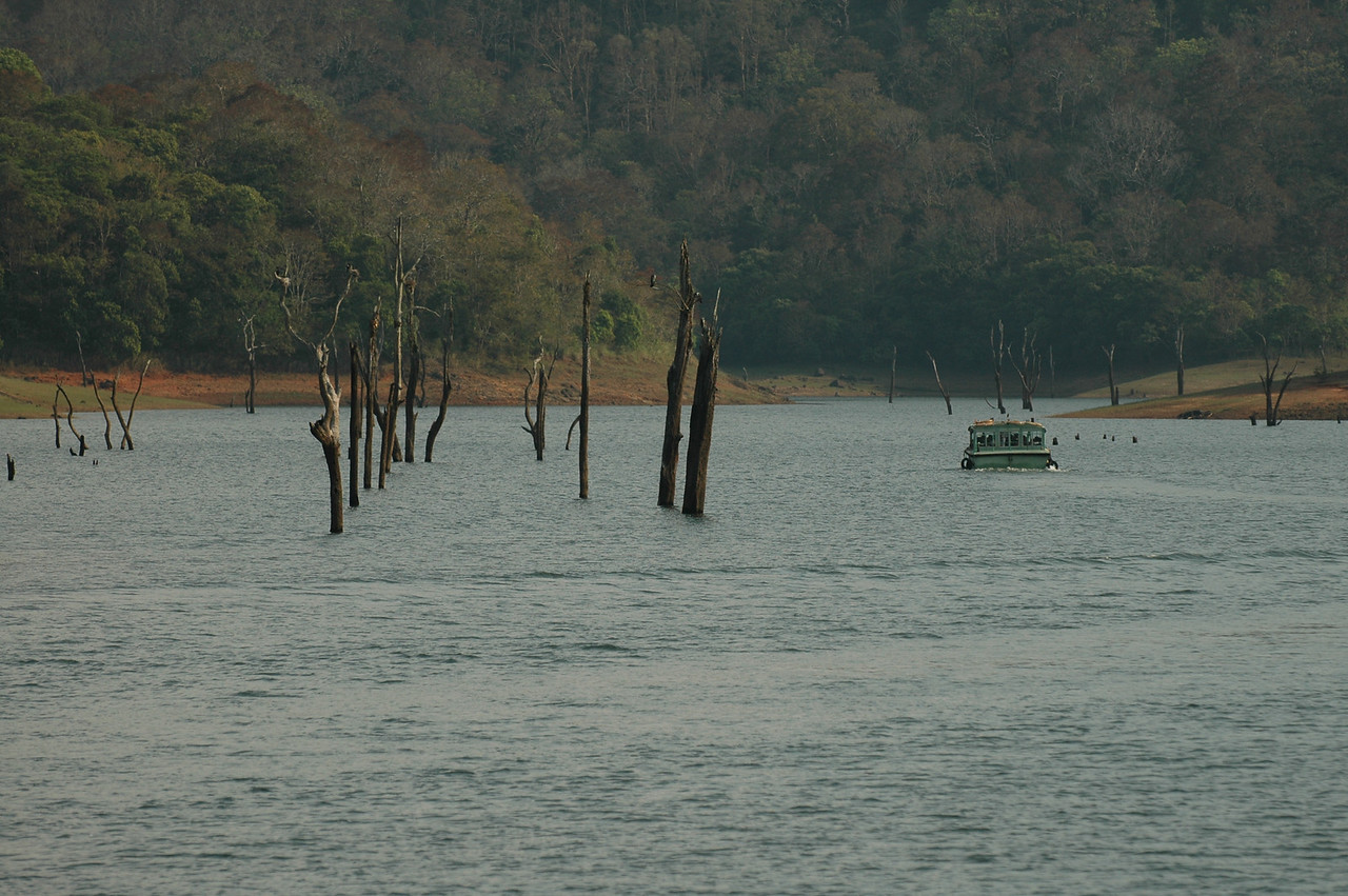 A boat traveling along the lake in the Periyar Wildlife Preserve