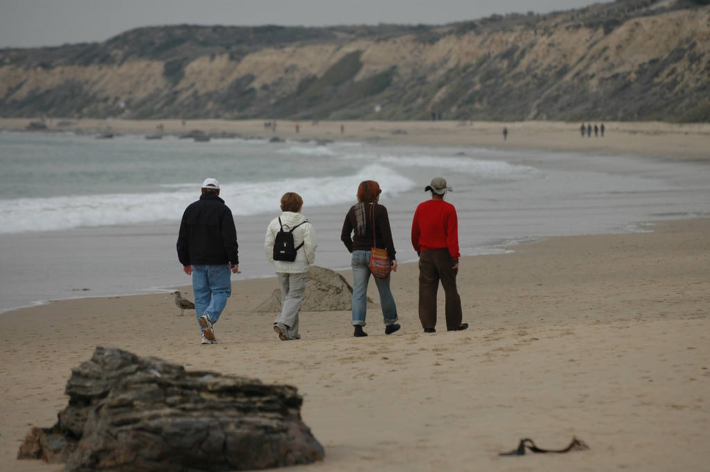 Stan, Pat, Cheryl, Dilip walking along the beach in Crystal Cove State Park.