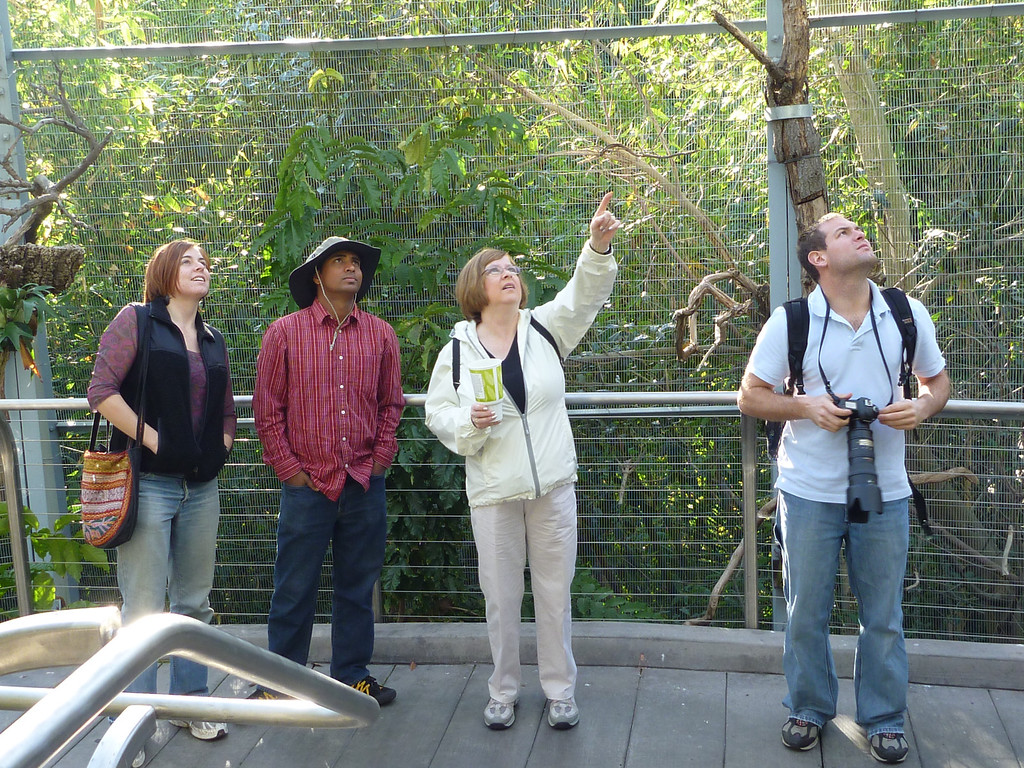Cheryl, Dilip, Pat and Jon bird watching at the San Diego Zoo
