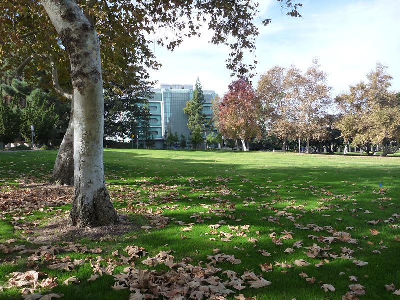 UC-Irvine Campus