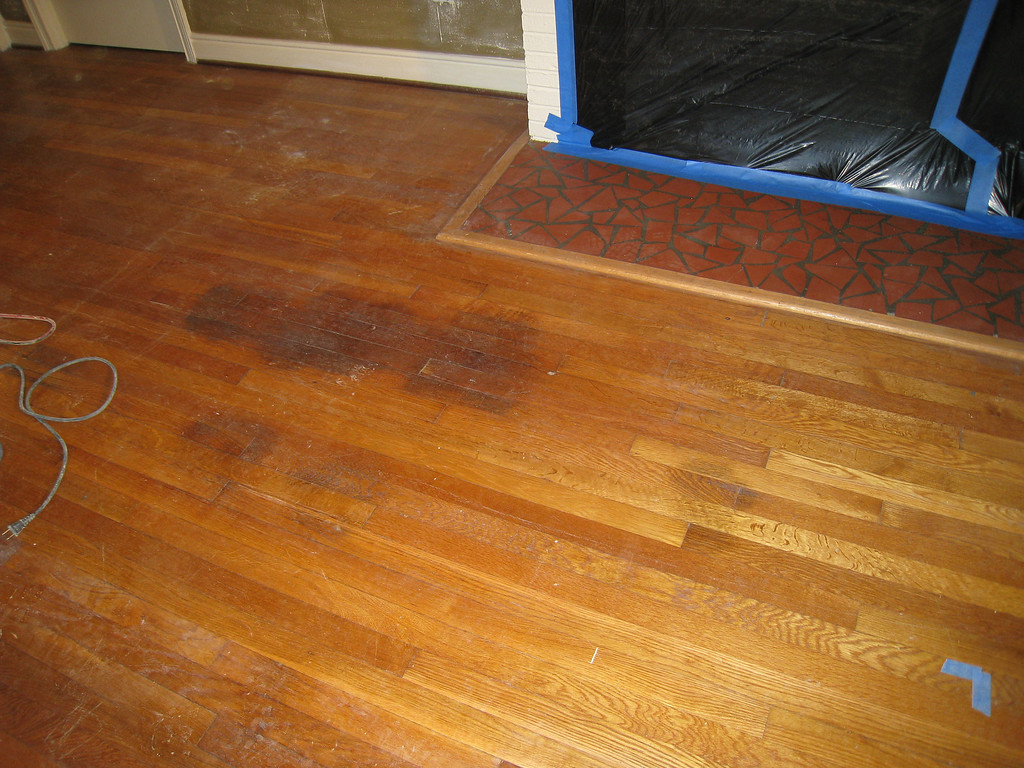 1/27/2009 - pet urine stains on the hardwood floor (the black spots)