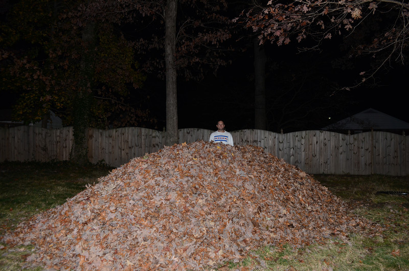 """11/21 big leaf pile.  jumping in it was chronicled in this YouTube video: <a href=""""http://www.youtube.com/watch?v=4HBNrcxBzxk"""">http://www.youtube.com/watch?v=4HBNrcxBzxk</a>"""