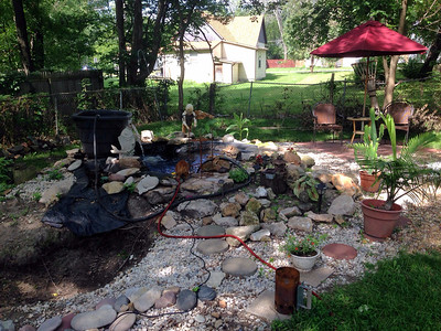 Doug's backyard oasis Sept 2014