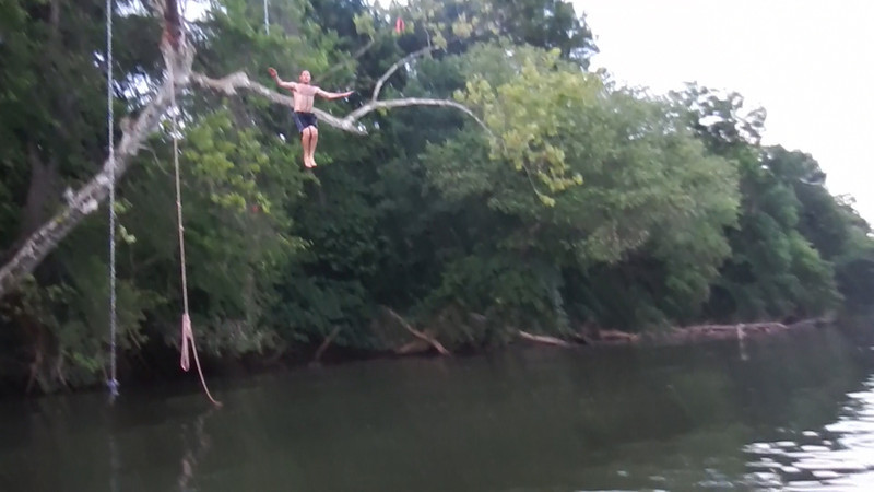 6/10 tree jumping