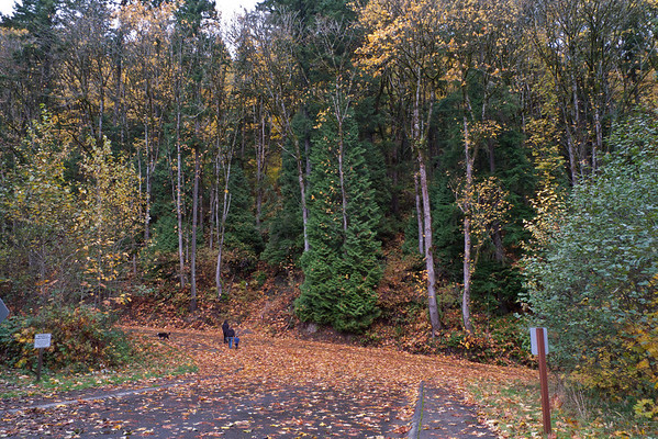 Terrace Trail Hike