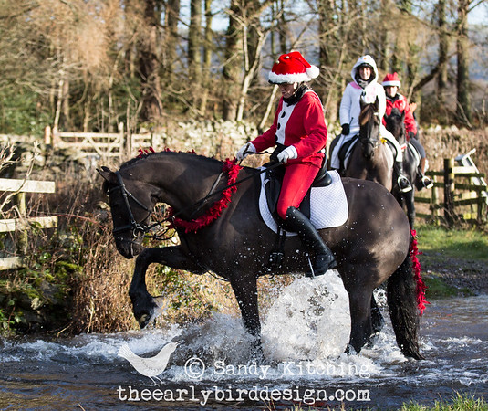 Friesian Xmas hack Dec 2014