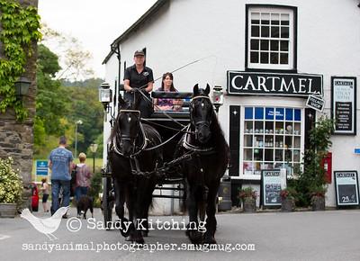 Cartmel carriage Julie Jun 2015